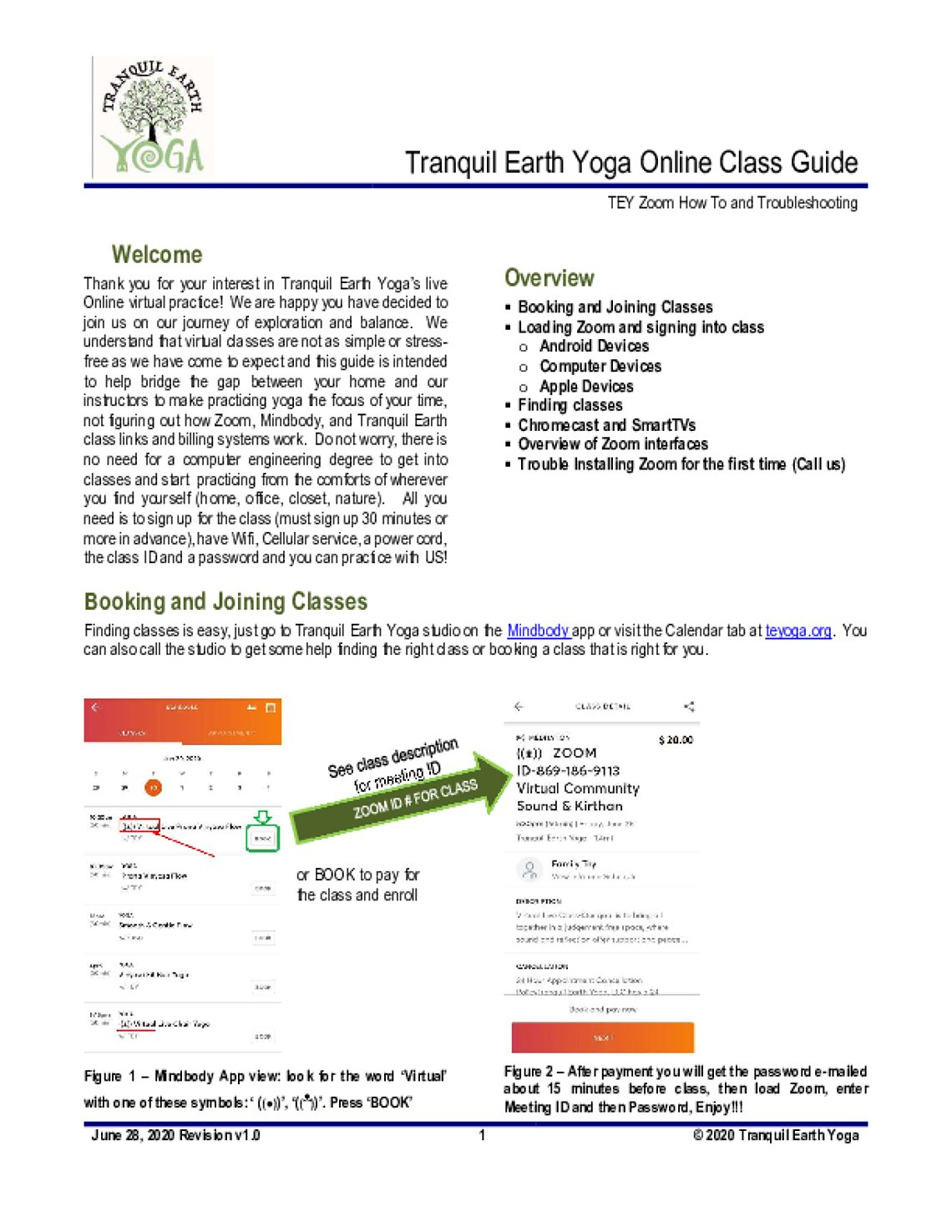 Virtual With Tranquil Earth Yoga classes Image